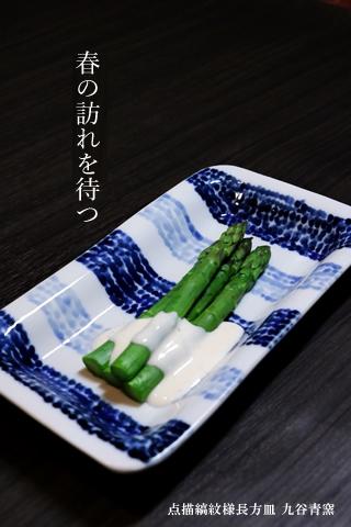 九谷青窯 焼き物皿 長角皿 長皿 点描縞紋様長方皿
