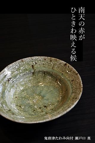 瀬戸口真 中鉢 唐津 陶器